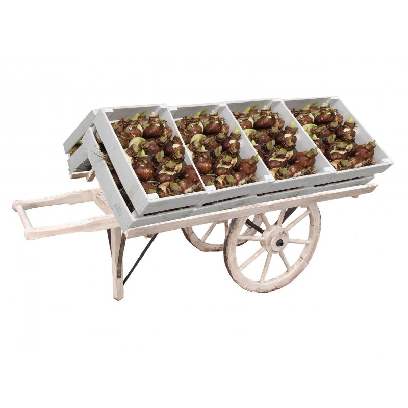 Torikärryt vihanneksille ja sipuleille